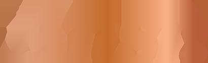 ANSR Mediation Services